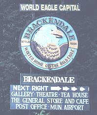Brackendale - Winter Home of the Bald Eagle - Squamish, BC